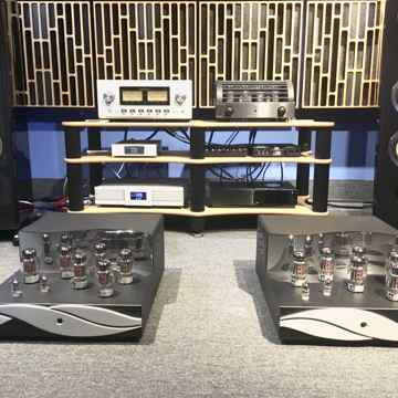 Eros 300 mono amps