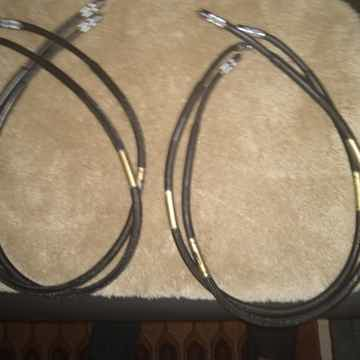 Big PRICE DROP Rare Echole Obsession Speaker Cables and...