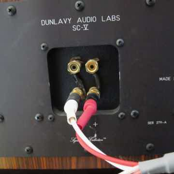 Dunlavy Audio Labs SC-V