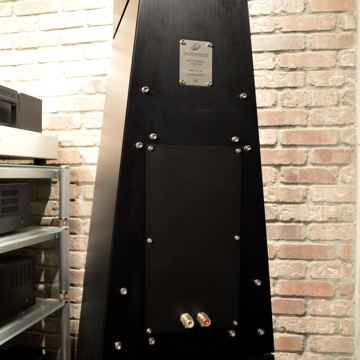 YG Acoustics Anat Ref II Pro