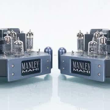 Mahi Mono Tube Power Amplifier