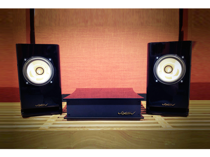 Voxativ Hagen Absolut - BRAND NEW - all-in-one audiophile system handmade in Germany