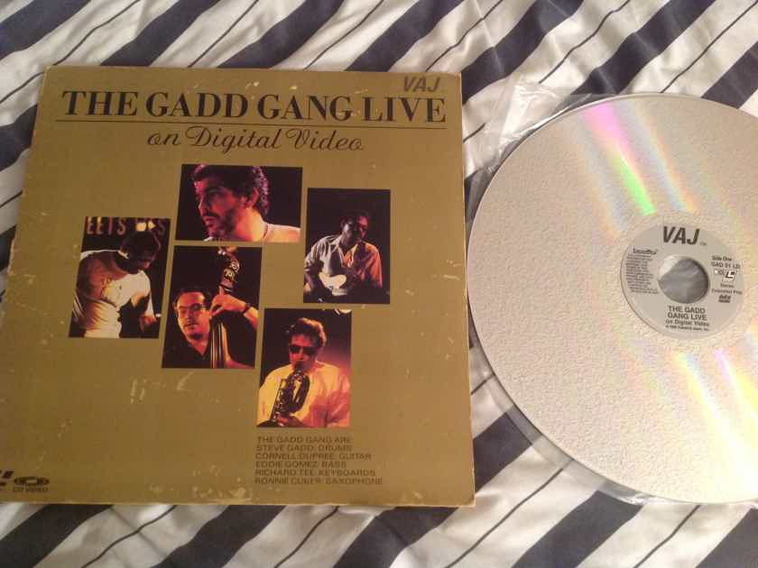 Steve Gadd  The Gadd Gang Live On Digital Video