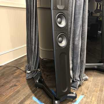 Raidho D2 - Beautiful Piano Black - Customer Trade-In!!!