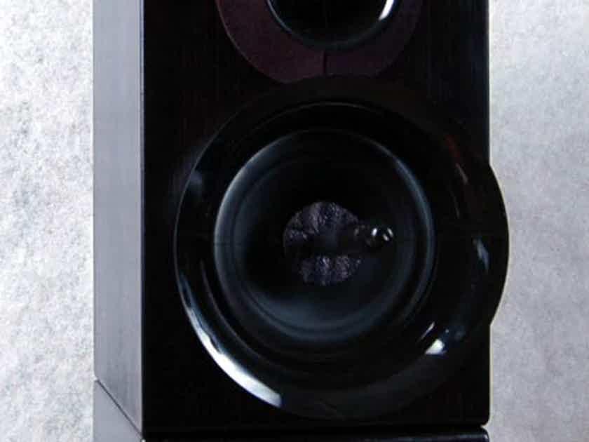 Wavetouch Audio Grand Teton SE Transparent sounding speaker.