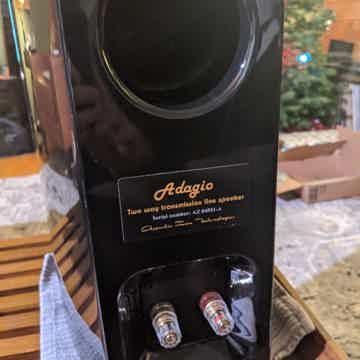 Acoustic Zen Adagio Jr.