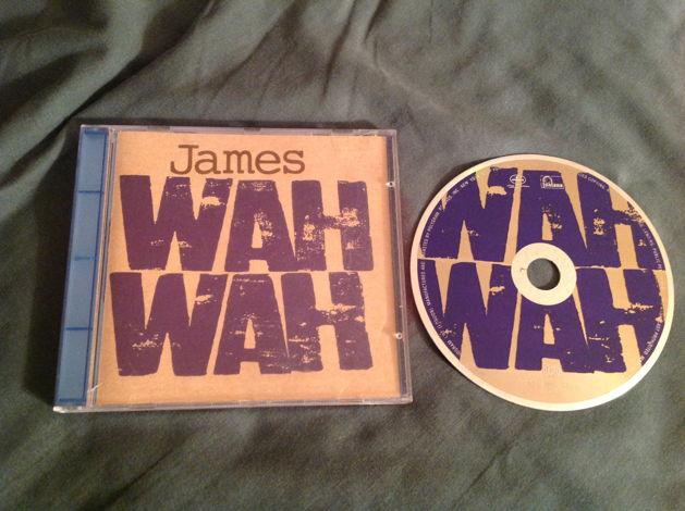 James Brian Eno Producer