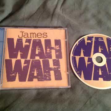 James Brian Eno Producer Wah Wah