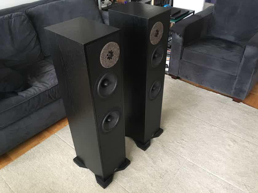 Ryan Loudspeakers R-620 Black