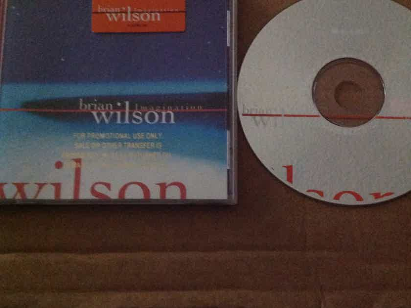 Brian Wilson - Imagination Hyper Sticker Front Of Jewel Case Giant Records CD
