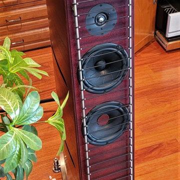 GamuT Audio RS5i Speakers