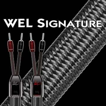 WEL Signature 6 ft Speaker cable with spades.