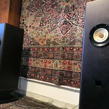 Feastrex Vivace - RARE Field Coil Speakers - REDUCED - ...