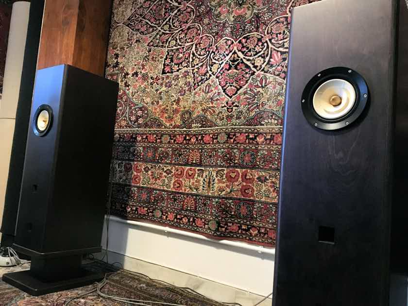 Feastrex Vivace - RARE Field Coil Speakers - REDUCED