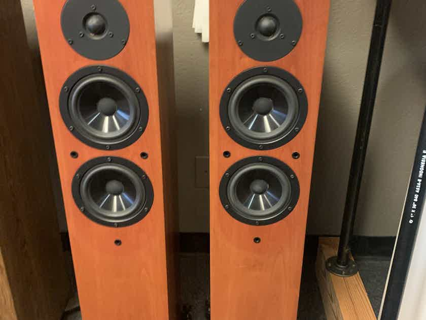 Soliloquy 5.3 Tower speakers Rare find