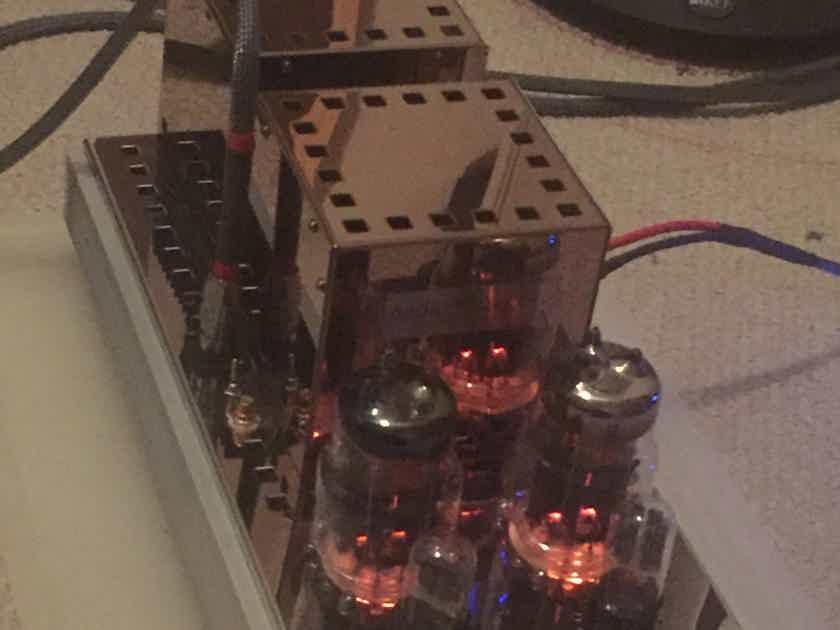 Audio Mirror 45w 6C33C Parallel SET Monoblocks *REDUCED*