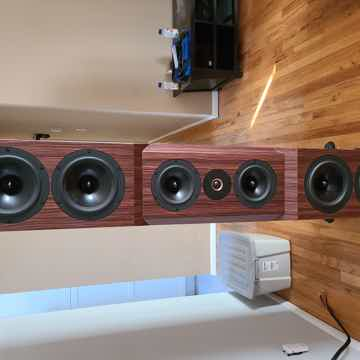 Tyler Acoustics D1x