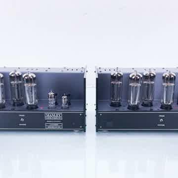 Monoblock 100 Mono Tube Power Amplifier