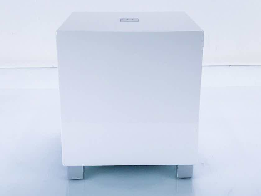 """REL T5 8"""" Powered Subwoofer; Gloss White; T-5 (17343)"""