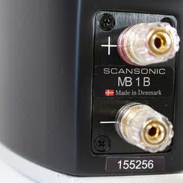 MB1 B stand-mount mini monitor