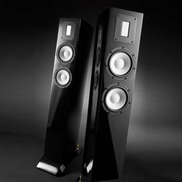 Raidho Acoustics  S-2.0