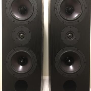 Tyler Acoustics D3MXs