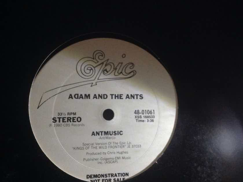 Adam And The Ants - Antmusic/Don't Be There Be Square  Epic Records Promo 12 Inch Single Vinyl NM