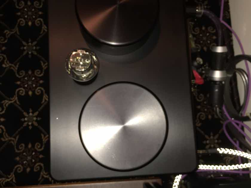 Butler Audio A100 Monad  Fantastic Tube Hybrid Monoblock Amps