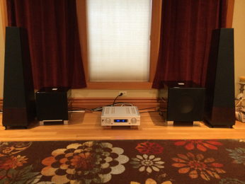 Pacific NW Music Room