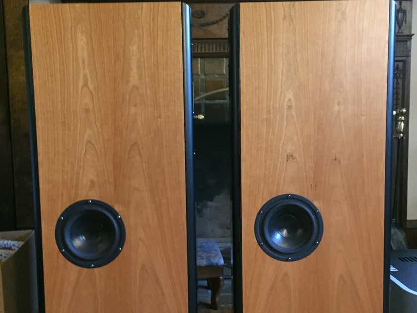 Audio Physic Virgo