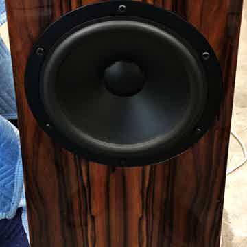 Kaiser Acoustics Classic