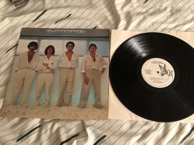 Sweetbottom Elektra Records White Label Promo LP