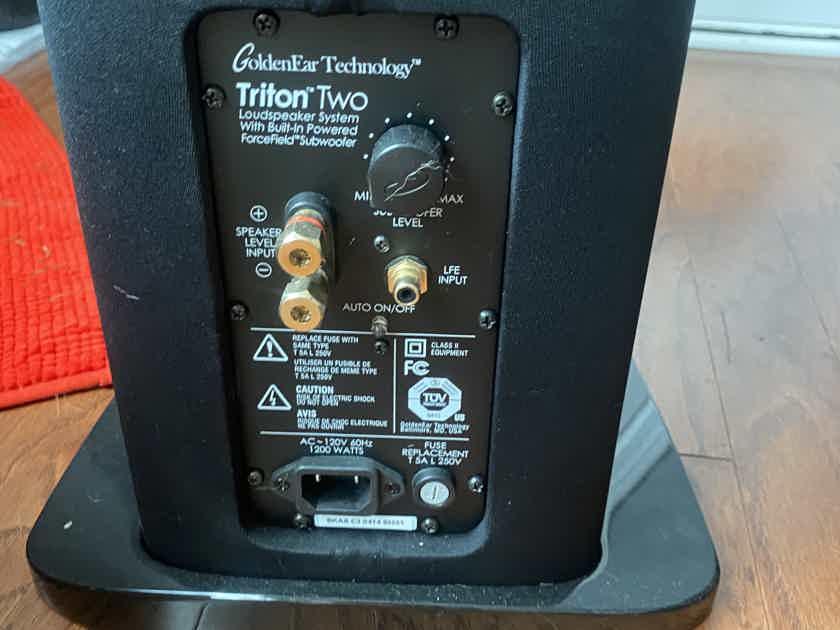 GoldenEar Technology Triton Two