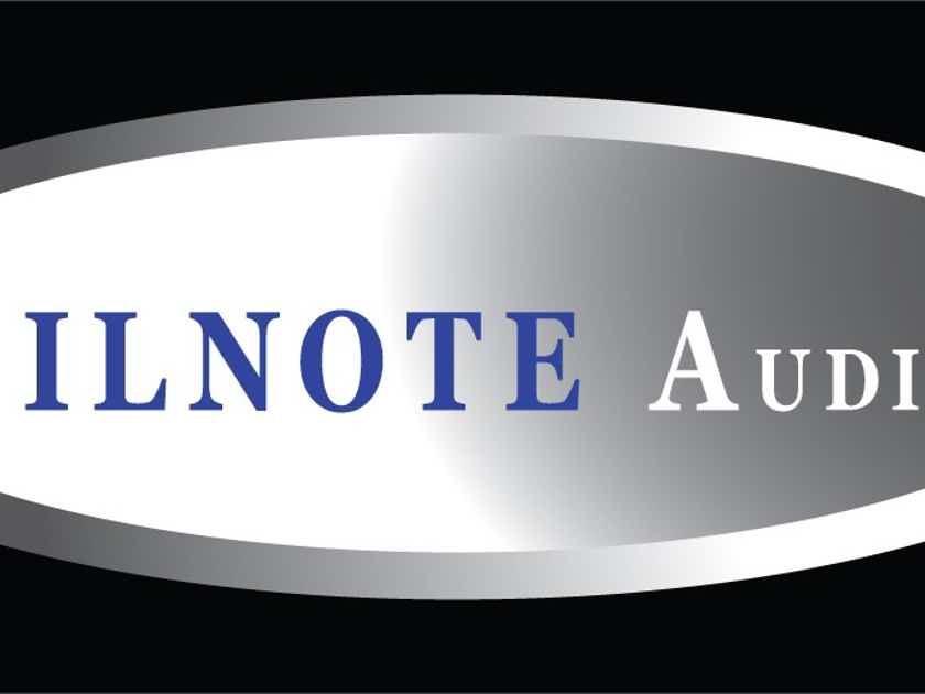 Silnote Audio  Anniversary Master Reference 6ft Pair State of The Art Reference Cables