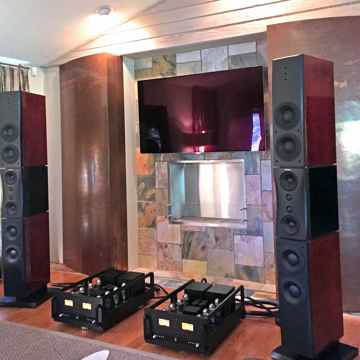 Allnic M-5000 with Dynaudio Platinum