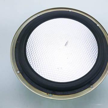 "Carver Amazing Loudspeaker 12"" Honeycomb Woofer"