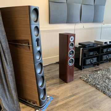 Dynaudio Focus 340 - Rosewood Finish - Beautiful Custom...