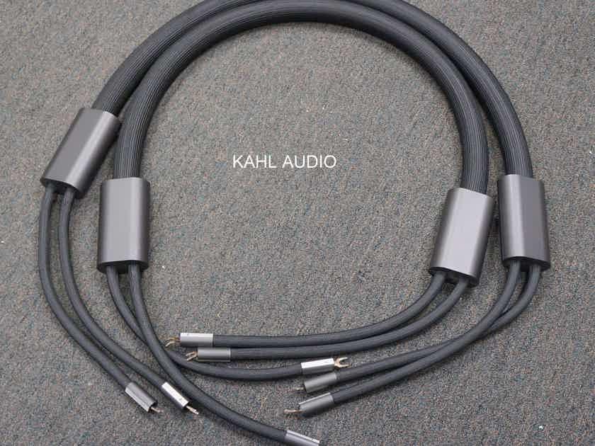 Goebel Lacorde Statement 2m speaker cables. Flagship! $27,000 MSRP.