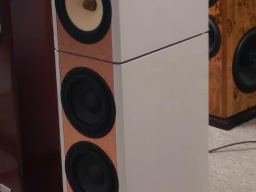 Salk Sound Exotica 3 Custom & very special version