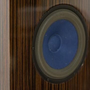 Audio Note (UK) ANE Spx Alnico