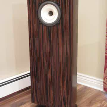 Charney Audio Maestro  in Ebony  with Voxativ AC-2.6 Dr...