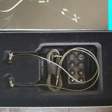 IE800