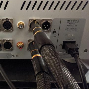 Ypsilon Electronics PST 100 MKII
