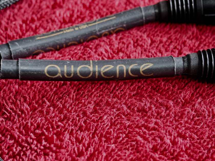 Audience Conductor Interconnect 50 ft pair with XLR Terminations Superb! Audience will re-terminate to your preferred length!