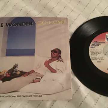 Stevie Wonder  Go Home
