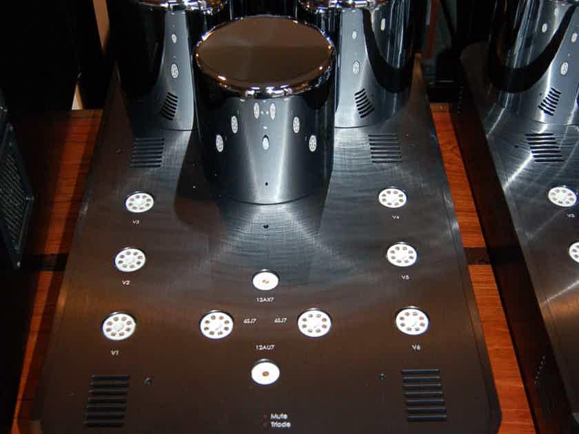 Ayon Audio Epsilon Mono Amps Pure Class A 240v model