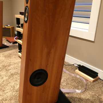 Audio Physics Avanti Century