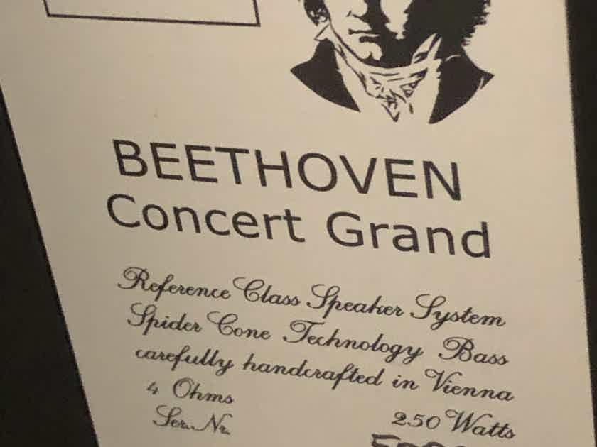 Vienna Acoustics Beethoven Concert Grand SE