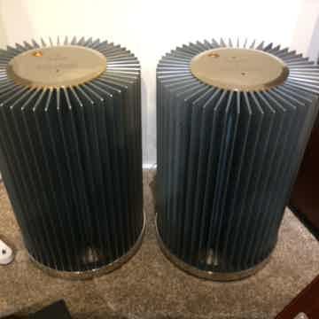 MSB Platinum M200 Monoblock Power Amplifiers (Silver/Go...