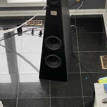 YG Acoustics Anat Ref II Pro Sub